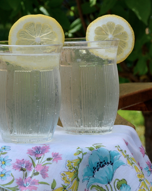 Elderflower coolers