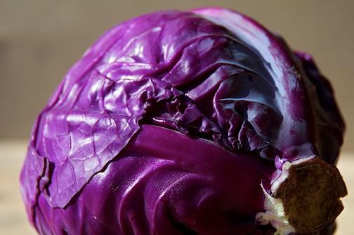 Homemade purple sauerkraut. - Jammy Chicken