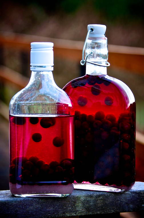 Sloe bottle 002