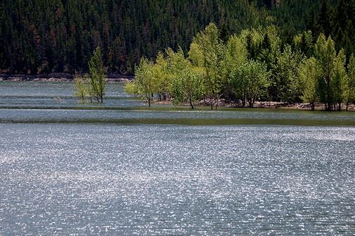 Montana 2012 10