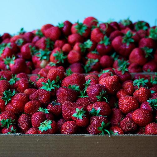 Strawberry jam 19