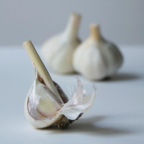 Garlic confit 1